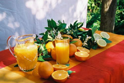 detox fasting retreat fresh juice