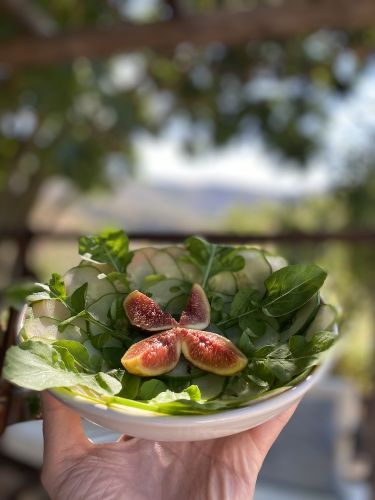 figs and green leaves at Moinhos Velhos